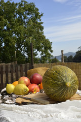 Melon and fruit outdoors