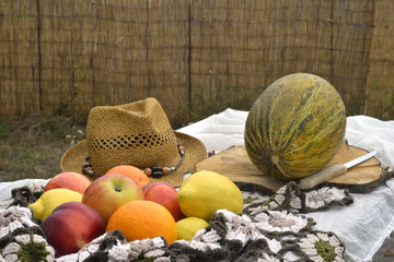 Summer fruits in a table field