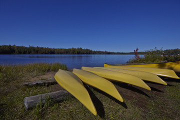 Yellow canoes in a row
