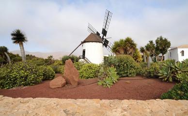 Jardin de cactus d'Antigua  Fuerteventura
