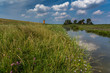 canvas print picture - Ostfriesische Landschaft mit dem Pilsumer Leuchtturm