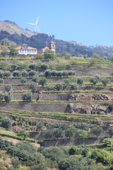 Unique Douro Valley