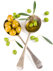 Olives, olive oil and twig of olive tree