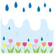 Tulip flower in the rain