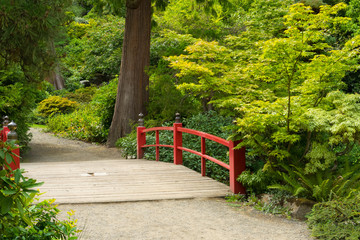 Wooden Japanese Foot Bridge