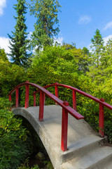 Red wooden Japanese foot bridge add theme to garden