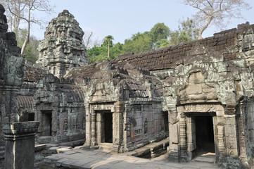 В храме Та Прохм. Ангкор Ват, Камбоджа