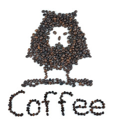 Coffee Beans image Owl