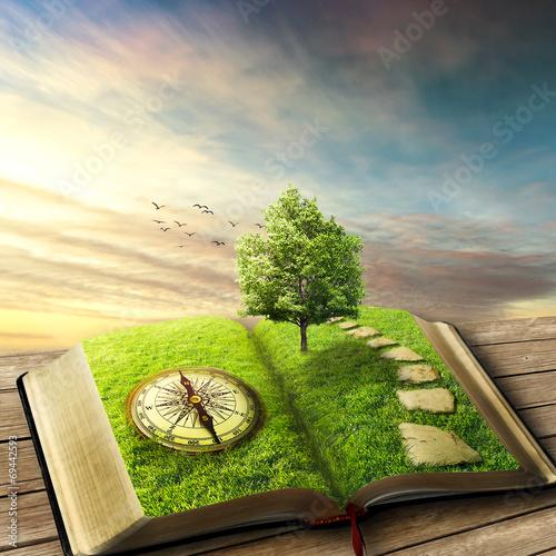 Leinwanddruck Bild Book of life concept, dreamland