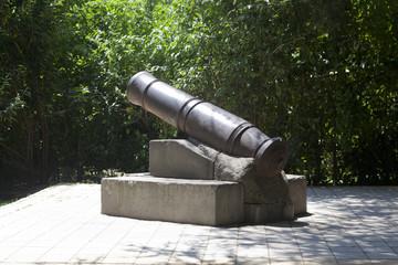 Орудие форта Лазарева