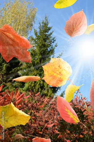 canvas print picture Herbst 10