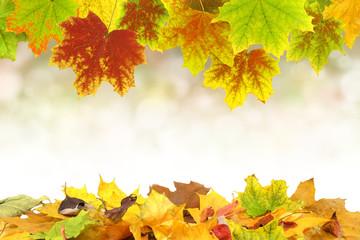 Herbst 57