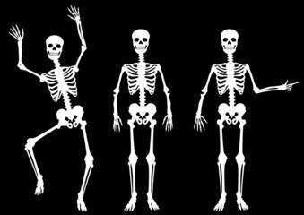 SET: Menschliches Skelett, hindeuten, tanzend, weiß auf schwarz