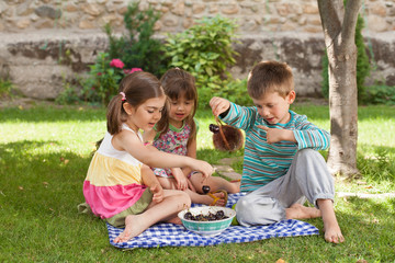 Children having a picnic with a bowl of cherries.