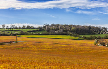 Landscape in the Perche Region of France