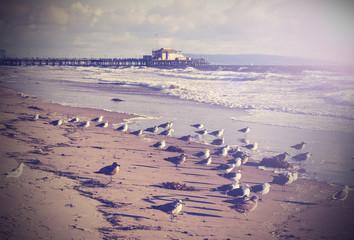 Vintage picture of Santa Monica beach, California, USA.