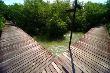 Wood bridge construction t-junction way