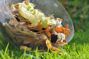 épluchures de légumes pour compost