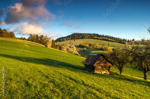 mountain meadow - 69452964