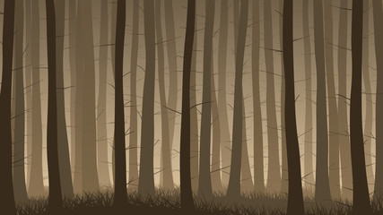 Horizontal illustration of misty coniferous forest.