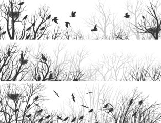 Horizontal banners of forest with tree branches and birds.