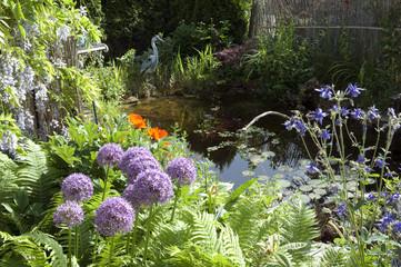 Gartenteich, Garden pond
