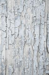 Shabby Chic: Holz Hintergrund, Struktur, Textur in Grau