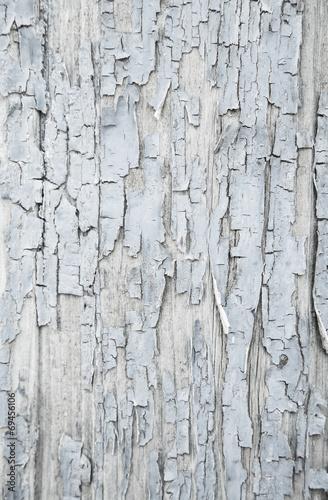 canvas print picture Shabby Chic: Holz Hintergrund, Struktur, Textur in Grau