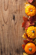decorative pumpkins and autumn leaves halloween background