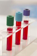 tubes de sang sur support