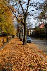 Jesienna ulica