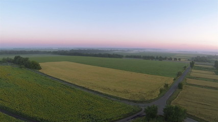 Agricultural field. Flight with decrease  Aerial