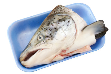 Raw salmon head in food box isolated on white
