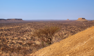 Landscape in Finger rock area
