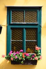 Altes Fenster mit Blumen