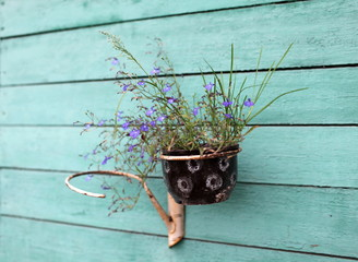flower pot with flowers on the wall