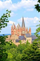 Limburger Dom, Burg Limburg (Blick vom Südost, 2013)
