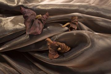 Atmosfera con fiori secchi e tessuto