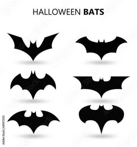 Leinwanddruck Bild Halloween bats