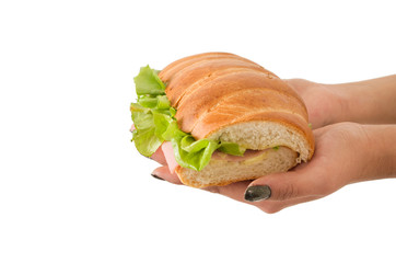 Closeup of hand holding lettuce and ham sandwich
