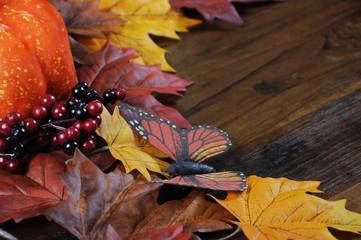Autumn Fall background selective focus closeup