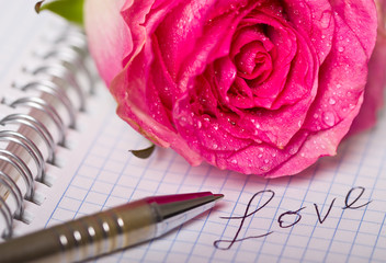 Rose on a notebook with a pen