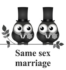 Monochrome comical same sex marriage