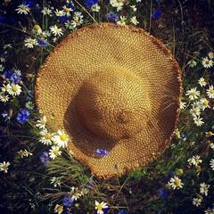 Kapelusz polne kwiaty