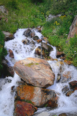 Mountain torrent in French Alps