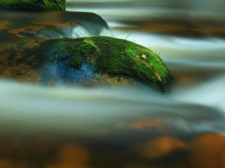 Rapids in the mountain river with wet mossy boulders