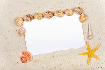 Leere Postkarte am Sandstrand mit Muscheln