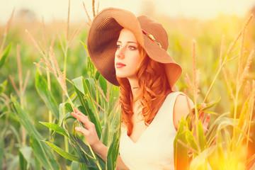 Redhead girl in corn field
