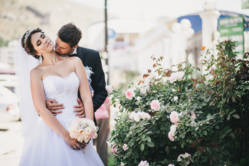 Happy and beautiful bride and groom kissing