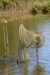Fischreuse im See